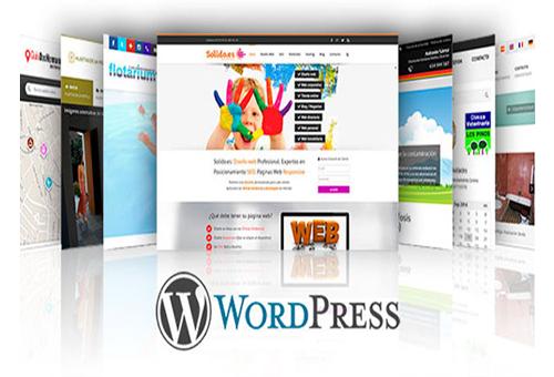 Web con WordPress – a partir de 250 euros!