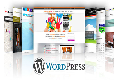 Web con WordPress – a partir de 250 euros!